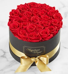 Magnificent Roses® Preserved Red Roses with Gold Ribbon