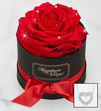 Magnificent Roses® Preserved Sparkle Rose & Necklace