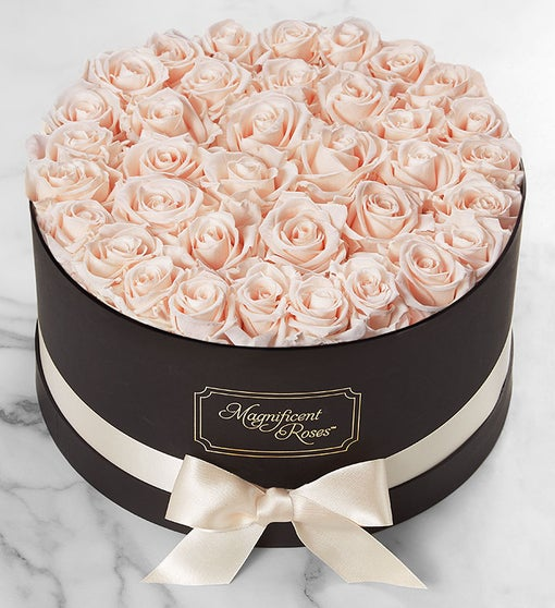 Magnificent Roses® Preserved  Blush Roses