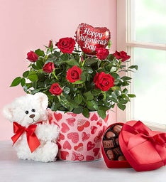 Cute Best Plant and Flower Shops for Valentines Day Compilation