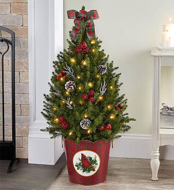 christmas traditions decorated spruce tree