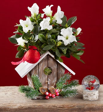 Christmas Birdhouse Of Blooms ®