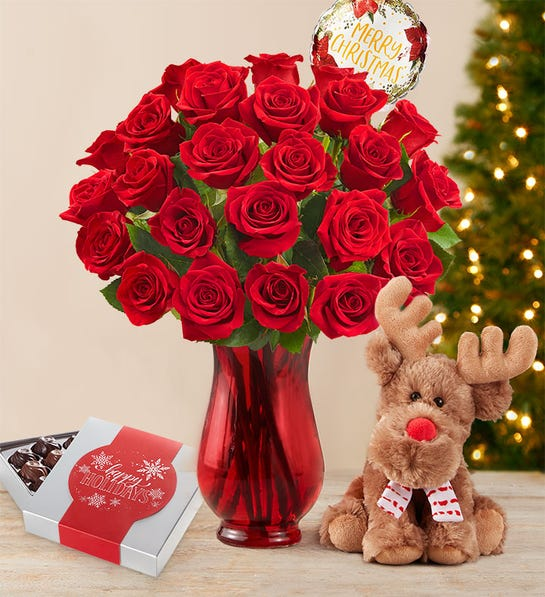 Merry Red Roses 24 Stems Bouquet w/Red Vase, Reindeer & Chocolate