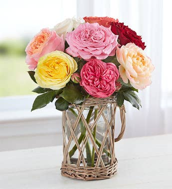 Summer Country Garden Roses