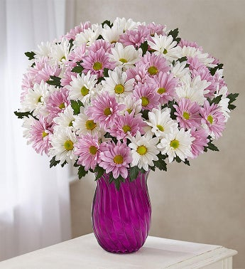 Lovely Daisy Bouquet + Free Vase