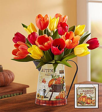 Country Harvest™ Tulips