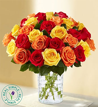 Autumn Roses by Real Simple®