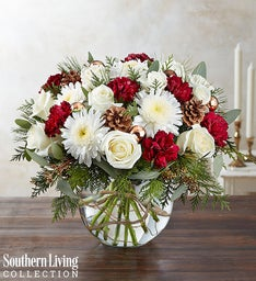 Natural Elegance™ by Southern Living™