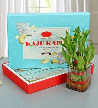 Lucky Wishes with Kaju Barfi-Diwali Gift