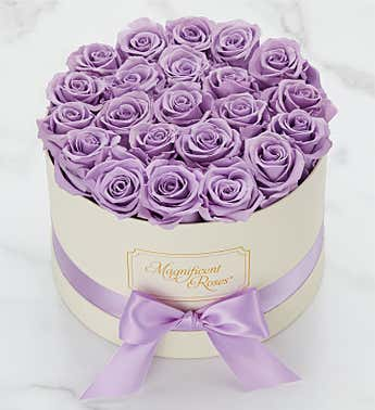 Magnificent Roses® Preserved Lavender Dream