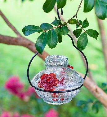Hummingbird Feeder–Clear Pot