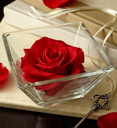 Infinite Red Rose Bloom Bowl
