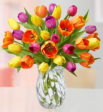 30 Assorted Tulips + Free Vase