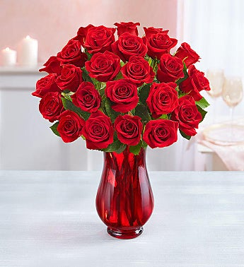 Two Dozen Red Roses + Free Shipping