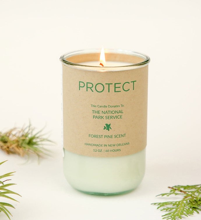 Protect - Forest Pine Scent Candle Gives To National Parks